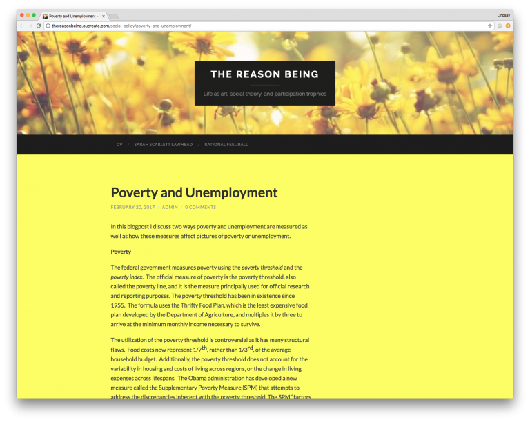 Screenshot of Sarah's blog post entitled Poverty and Unemployment