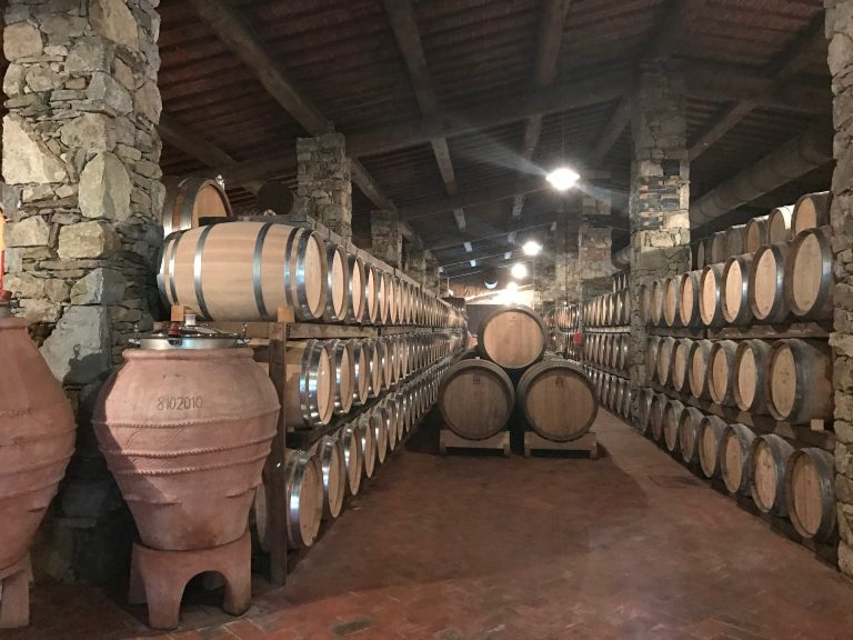 Ryan's photo of a Tuscan winery