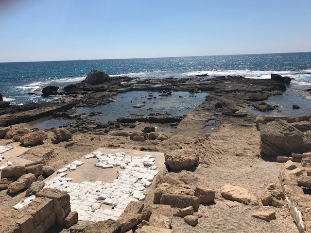 Elizabeth's photo of Herod's swimming pool in Israel