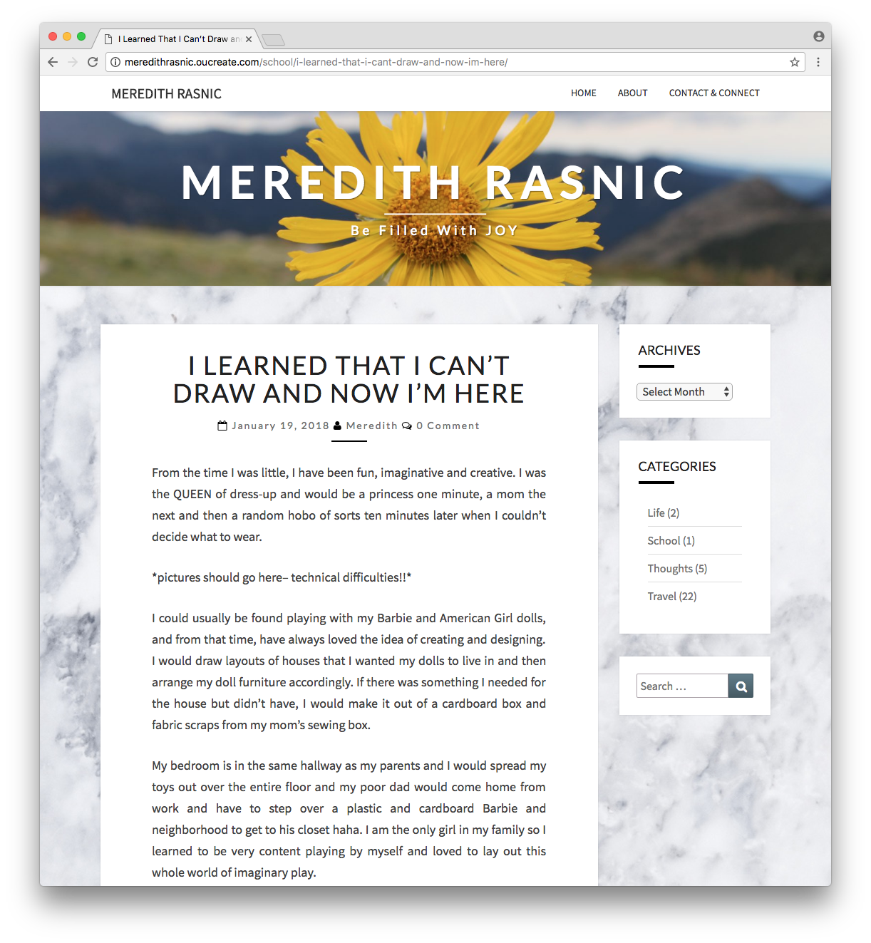 Screen shot of Meredith's blog post