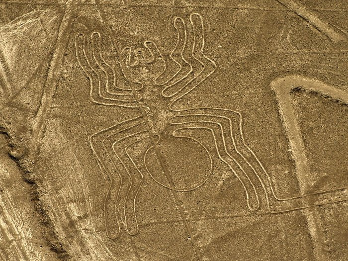 Aerial view of the Spider (46 meters long) at Nazca Lines, some 435 km south of Lima, Peru on December 11, 2014. Geoglyphs can be seen only from atop the surrounding foothills or from aircrafts. The purpose of Nazca lines remains unclear, according some scientists Nazca people created them to be seen by their gods from the sky. Nazca Lines cover an area of about 500 km2.      AFP PHOTO / MARTIN BERNETTI        (Photo credit should read MARTIN BERNETTI/AFP/Getty Images)