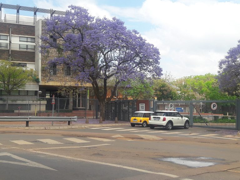 Brooke's picture of the University of Pretoria