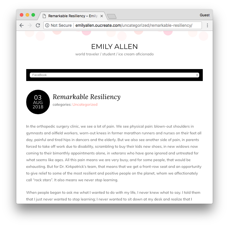 Screenshot of Emily's blog post